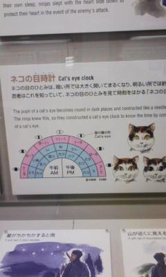 猫の目時計