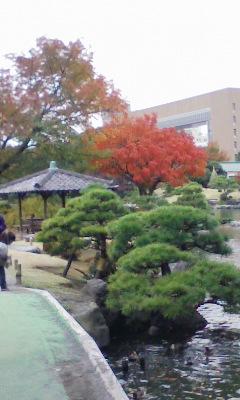 深川清澄庭園と資料館へ