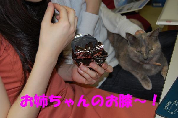 201003245
